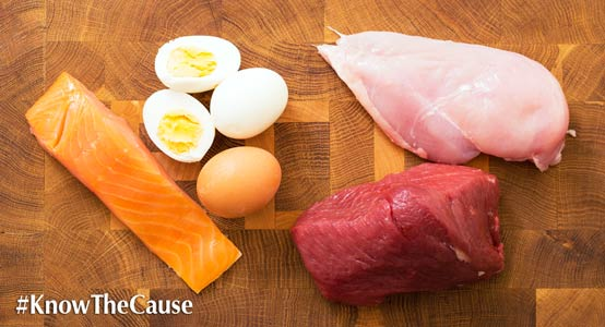 6-protein-sources-554px