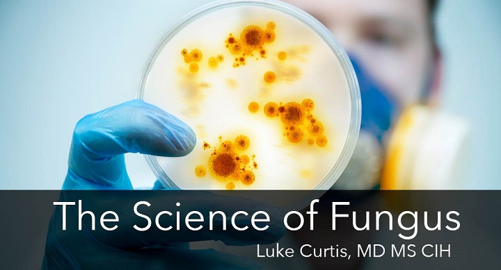 Science of Fungus