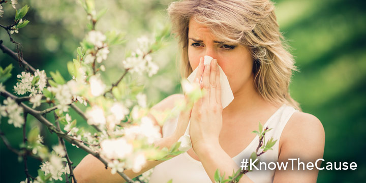 Fungus Link to Spring Allergies