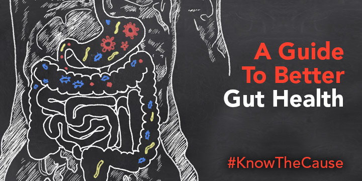 A Guide to better Gut Health